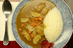 Rice and beef curry in dish. Rice and beef curry in Japanese style Royalty Free Stock Photo