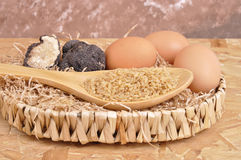 Rice and black truffle Stock Images