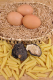Rice and black truffle Royalty Free Stock Photo