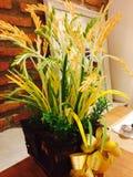 Rice. Blade vase decorat table Royalty Free Stock Photos
