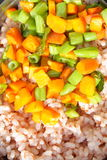 Rice with bold vegetables. Red rice with bold vegetables Stock Photography