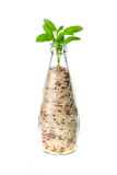 Rice bottle Royalty Free Stock Photography