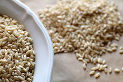 Rice in bowl close-up, rice in background. Royalty Free Stock Photography