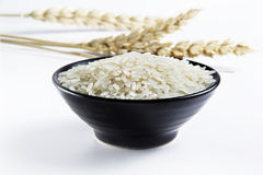 Rice in bowl Royalty Free Stock Photography