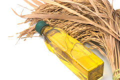 Rice bran oil in bottle glass with rice paddy Stock Photography