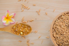 Rice bran oil capsules and paddy Natural Supplement Royalty Free Stock Images
