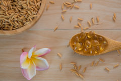 Rice bran oil capsules and paddy Natural Supplement Stock Image