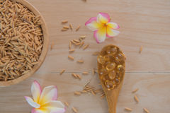Rice bran oil capsules and paddy Natural Supplement Royalty Free Stock Photo