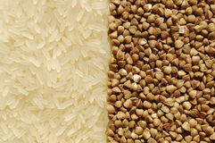 Rice and buckwheat in contact with each other Stock Images