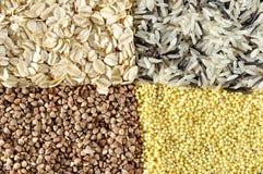 Rice, buckwheat, millet, porridge. Four square Stock Photos