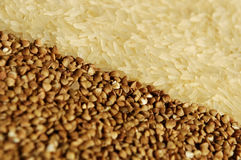 Rice and buckwheat relate to each other on the dia Stock Photos