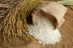 Rice in burlap sack Stock Photography