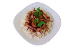 Rice with calamaries Stock Images