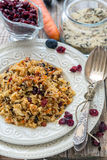 Rice with carrots, raisins and cranberries. Stock Images