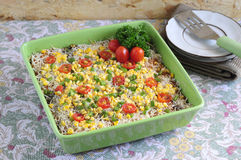 Rice Casserole 02 Stock Image
