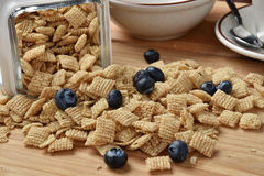 Rice cereal with blueberries Royalty Free Stock Photo