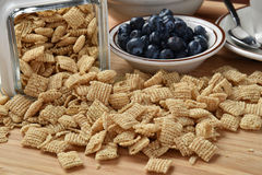 Rice cereal and blueberries Stock Image