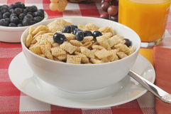 Rice cereal Stock Image