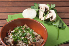 Rice with Champignon mushroom. Dish of traditional Italian cuisine Royalty Free Stock Image