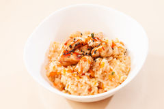 Rice with chicken Stock Images