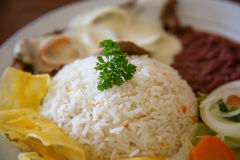 Rice with chicken, beans and salad. From Nicaraguan cuisine stock image
