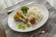 Rice and chicken Royalty Free Stock Photography