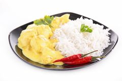 Rice and chicken curry Stock Images