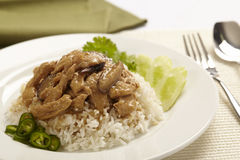 Rice with chicken Royalty Free Stock Photo