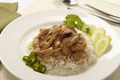Rice with chicken Royalty Free Stock Photos