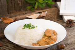 Rice with chicken in gravy suace Royalty Free Stock Image
