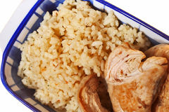 Rice and chicken meat Stock Images