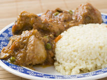 Rice and chicken with sauce Royalty Free Stock Images