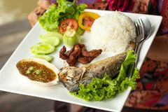 Rice, chili kumberland, ryba i wieprzowina, smażyliśmy z warzywami na whit Obrazy Royalty Free