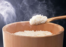 Rice  of china Stock Image