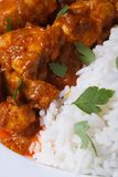 Rice and chunks of chicken curry macro vertical Royalty Free Stock Photography