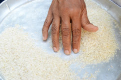rice cleaning Stock Photos