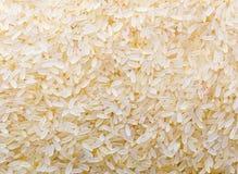 Rice closeup Stock Image