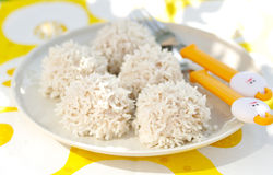 Rice Coated Meat Balls Royalty Free Stock Photo