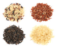 Rice collection Stock Images