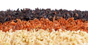 Rice collection isolated on white background, Jasmine, Brown, Mi Stock Photo