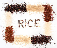 Rice collection  on white background Royalty Free Stock Photos