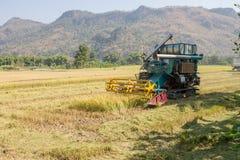 Rice combine harvesters Stock Photos