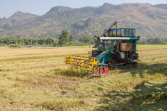Rice combine harvesters Stock Photography