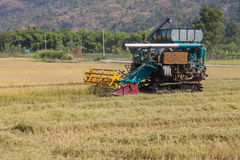 Rice combine harvesters Royalty Free Stock Image