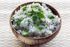 Rice with Coriander or Cilantro Royalty Free Stock Photo