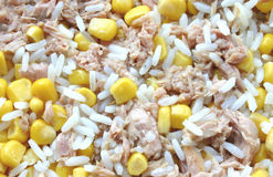 Rice, corn and tuna Royalty Free Stock Image