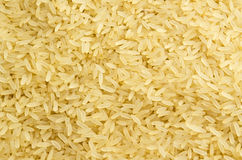 Rice corns Royalty Free Stock Photos