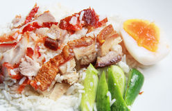 Rice with crispy and bbq pork Royalty Free Stock Images
