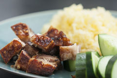 Rice with crispy pork Royalty Free Stock Photography