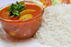 Rice and Curry Stock Images